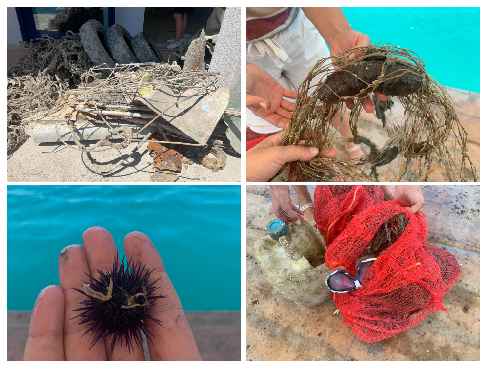 A sample of litter collected by divers at the Mali Ston Bay